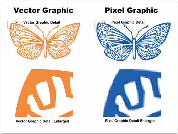 Vector Graphic Comparison
